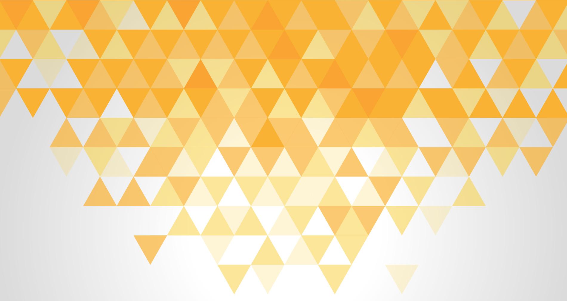 Website Design & Development Company | NetWorld